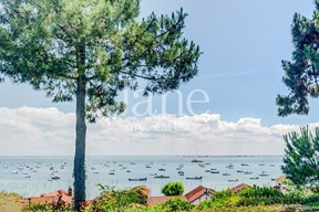 Charming house with view on the bassin in Cap Ferret